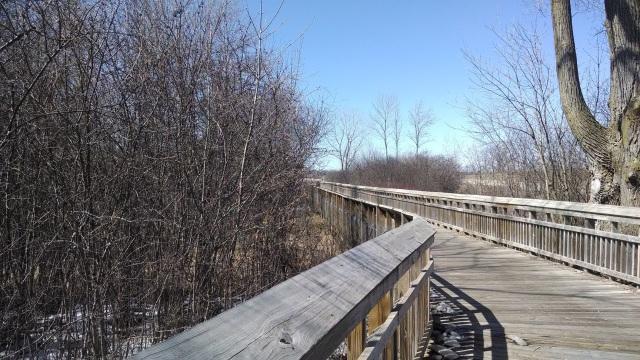 Bridges 002