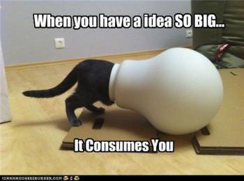 Cat Idea 1