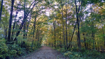 Elroy Trails 080