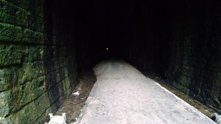 Elroy Trails 090