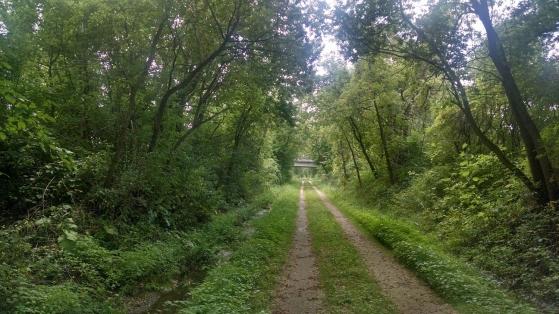 Wild Goose Trail 007
