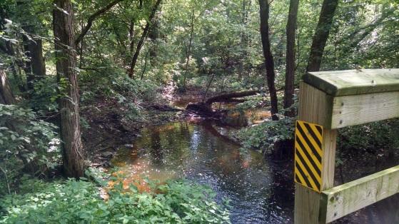 Wild Goose Trail 012