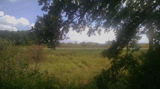 Wild Goose Trail 015