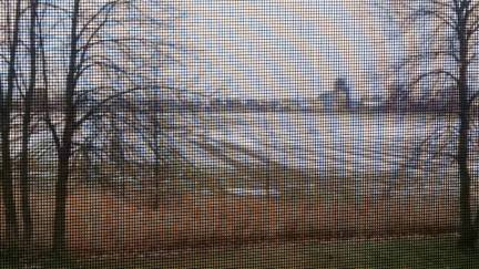 winter Blur