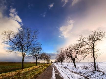 Winter-Spring_Wallpaper_niopo1 (1)