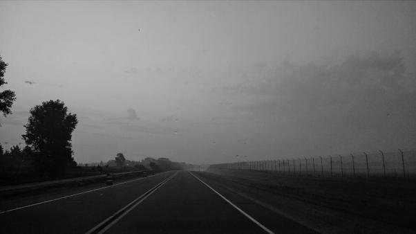 Foggy Morning 006