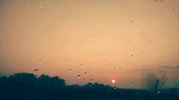 Foggy Morning 008