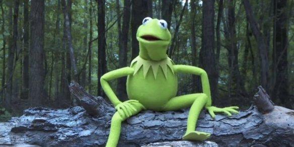 kermit-the-frog-ice-bucket-facebook