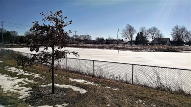 It will not be spring until the ice is gone from the holding pond and the geese begin to return.