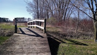 A bridge in spring.