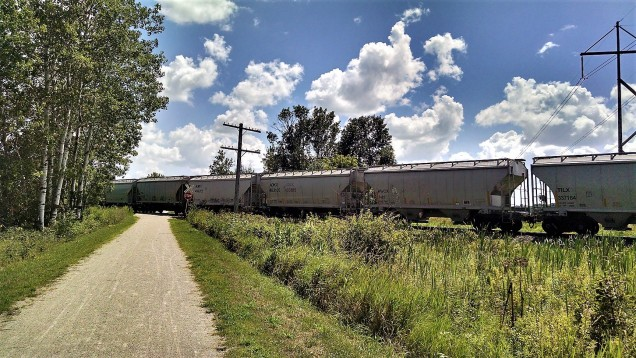 Stymied by a speeding train.