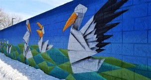 Pelicans painted on a brick wall along the trail. It provides a lovely barrier between the trail and an industrial building.